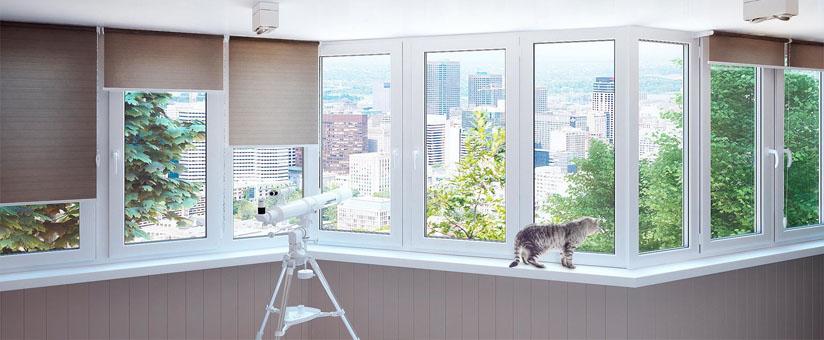 Двустворчатые окна в квартире